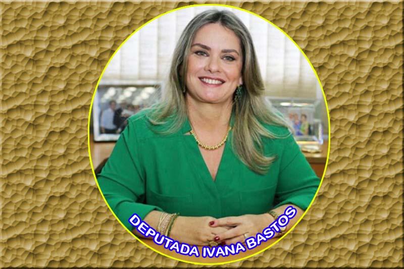 Ivana defende a criação de crédito para micro e pequenos empresários